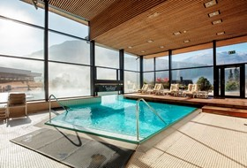 Indoor pool with swimming to the outside